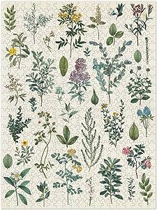 Americanflat 1000 Piece Flower Puzzle, 20x27 Inches, Victorian Garden Art by Wild Apple Portfolio