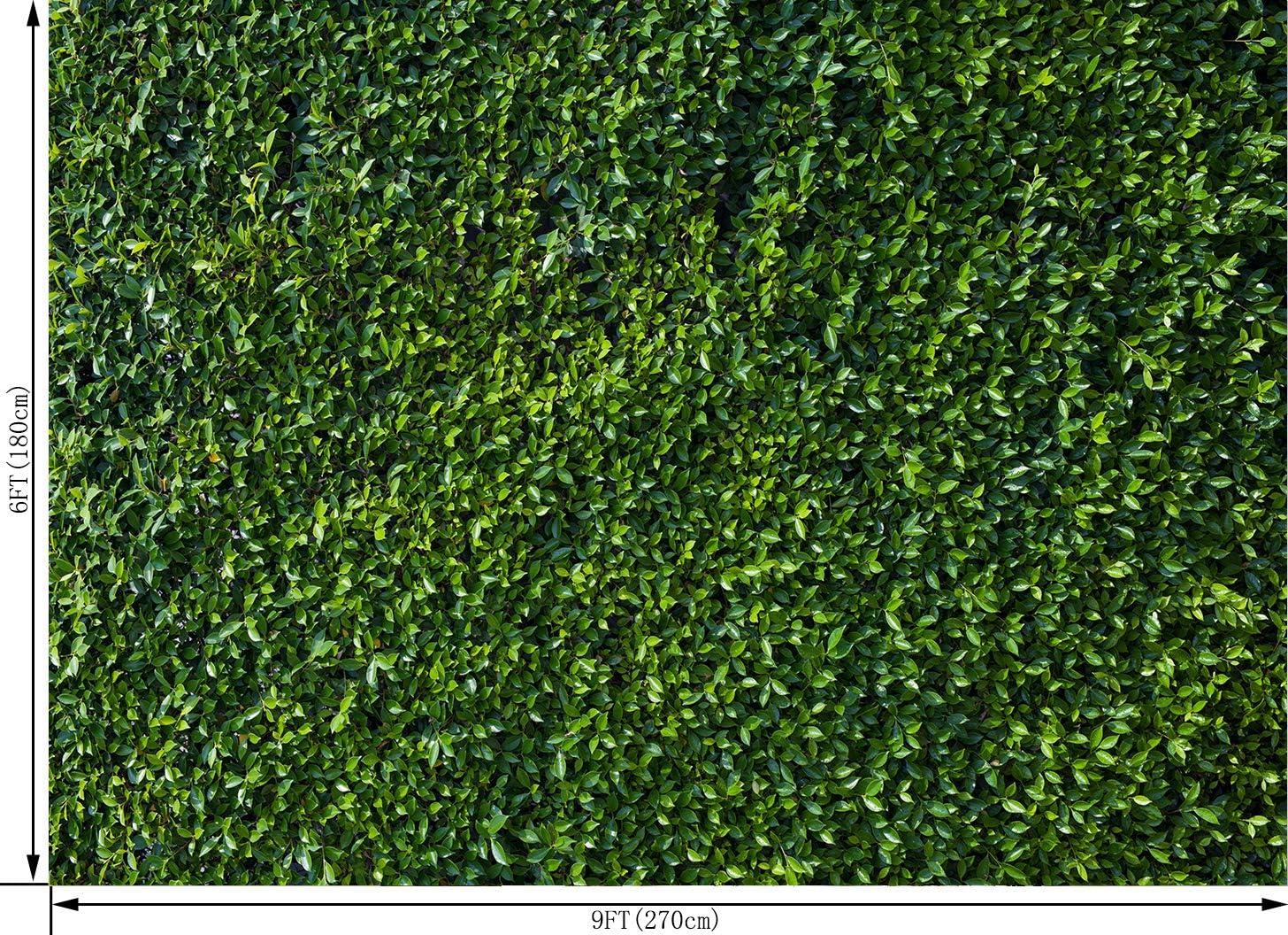 Ouyida 2 7 X 1 8 M Grüne Blätter Fotografie Hintergrund Kamera