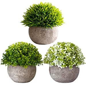 3 Pots Mixed Topiary Artificial Succulent Plants with Pots – Realistic Greenery Mini Potted Faux Plant Arrangements | For Home Office Decor, Dorm Room, Bathroom, Kitchen Table Centerpieces
