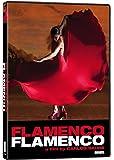 Flamenco Flamenco (Sous-titres français)