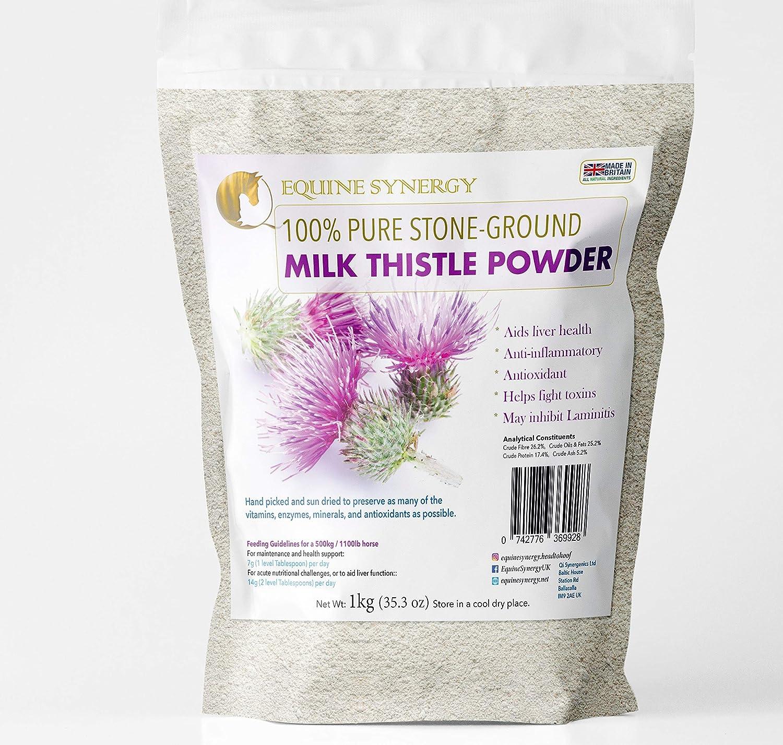 Equine Synergy - Cardo de leche de piedra 100% pura (1 kg, desintoxicación, apoyo inmunológico y salud hepática