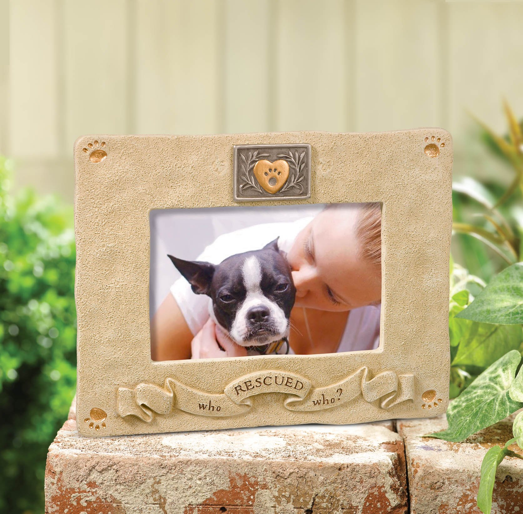 Grasslands Road Rescued Picture Frame, 4 by 6-Inch by Grasslands Road (Image #2)