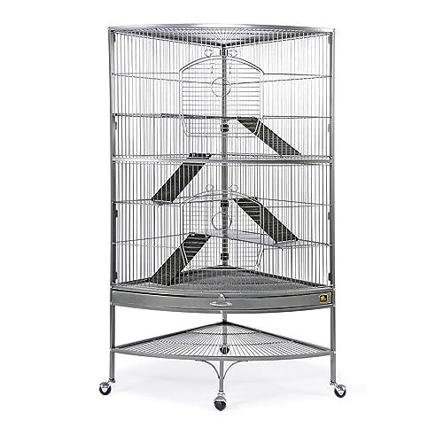 Ferret Cages: Amazon.com