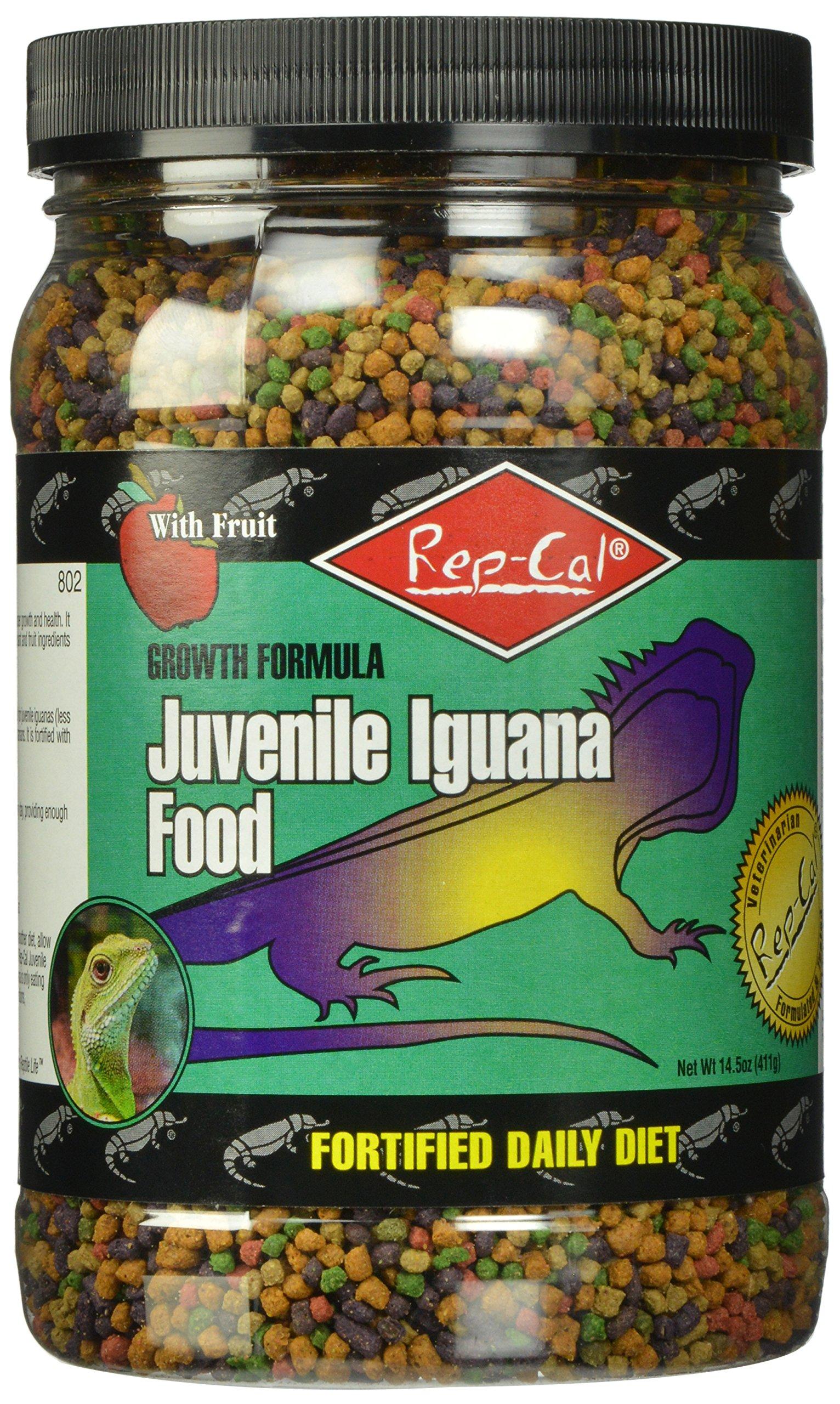Rep-Cal SRP00802 Juvenile Iguana Food, 14.5-Ounce by Rep-Cal