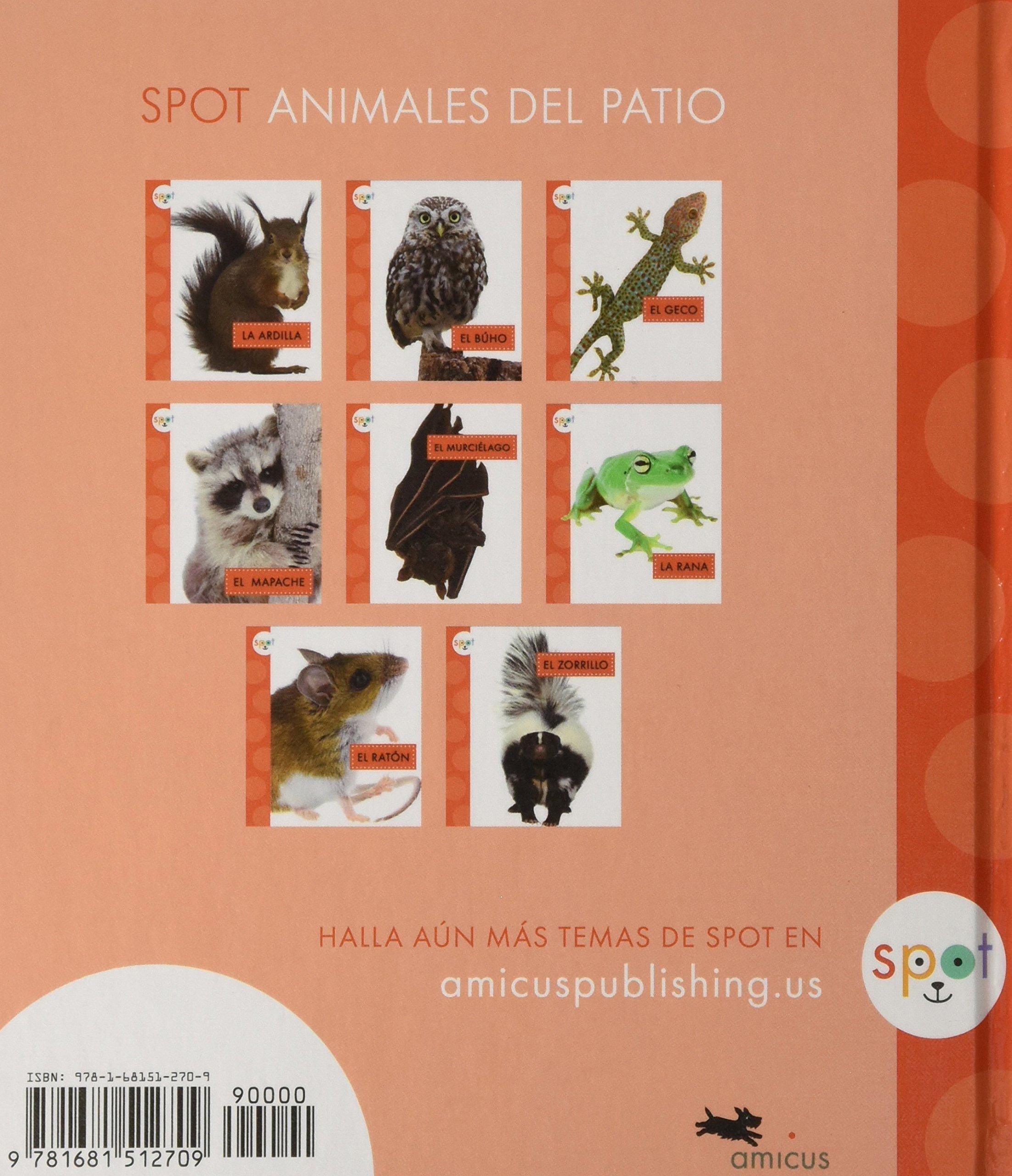 El Murciélago / Bats (Spot Animales del patio) (Spanish Edition) by Amicus (Image #2)