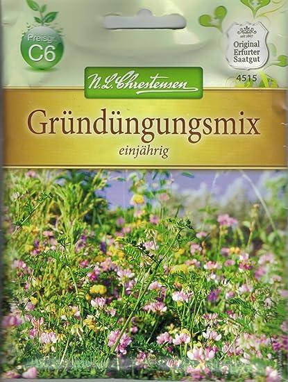 5106 Chrestensen Mädchenauge /'Mischung/' Saatgut Samen