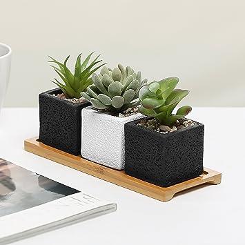 Juego de 3 Mini macetas, cuadrado cemento macetas W/decorativo bandeja de madera de bambú pantalla: Amazon.es: Jardín