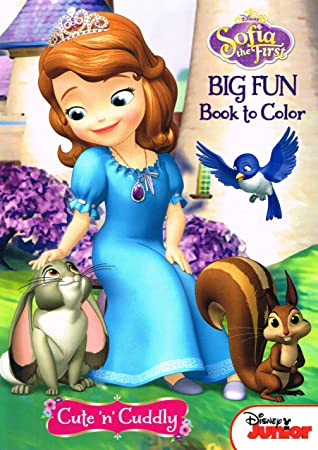 disney sofia the first coloring and activity book set 2 books 96 pgs - First Coloring Book