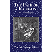 The Path of a Kabbalist (English Edition)