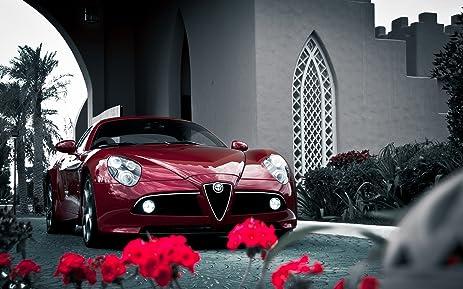 Amazoncom Alfa Romeo C Competizione Sports Car X Poster Photo - Alfa romeo poster