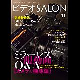 ビデオ SALON (サロン) 2018年 11月号 [雑誌]
