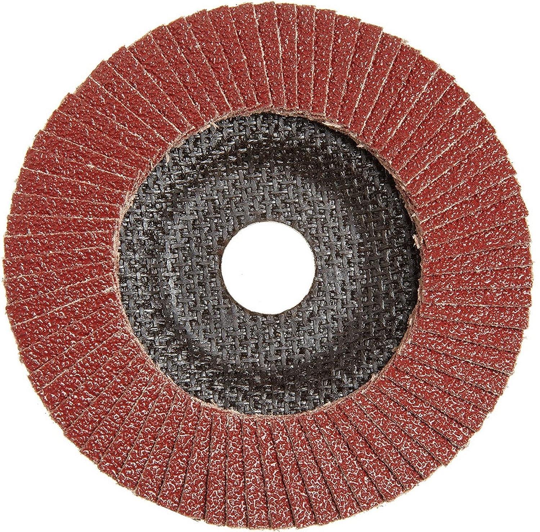 10X Fächerscheiben 125mm Korn 40-80 Winkelschleifer Schleifmop Schleifscheiben