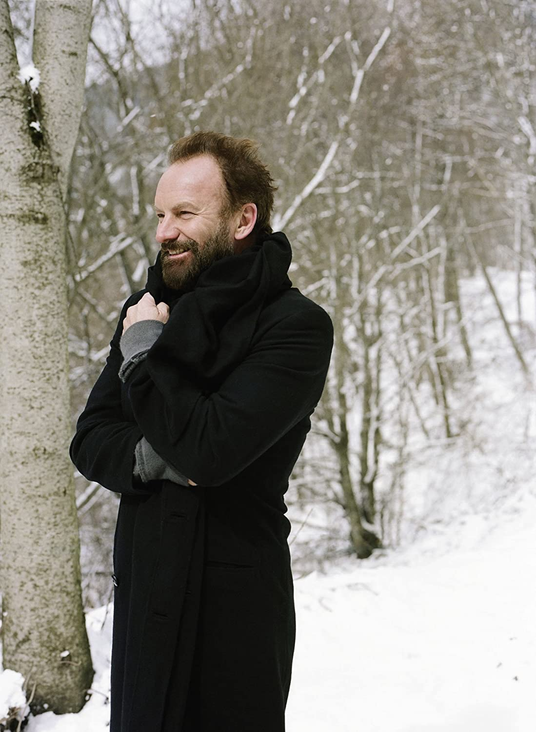 Sting - If On A Winter's Night... - Amazon.com Music