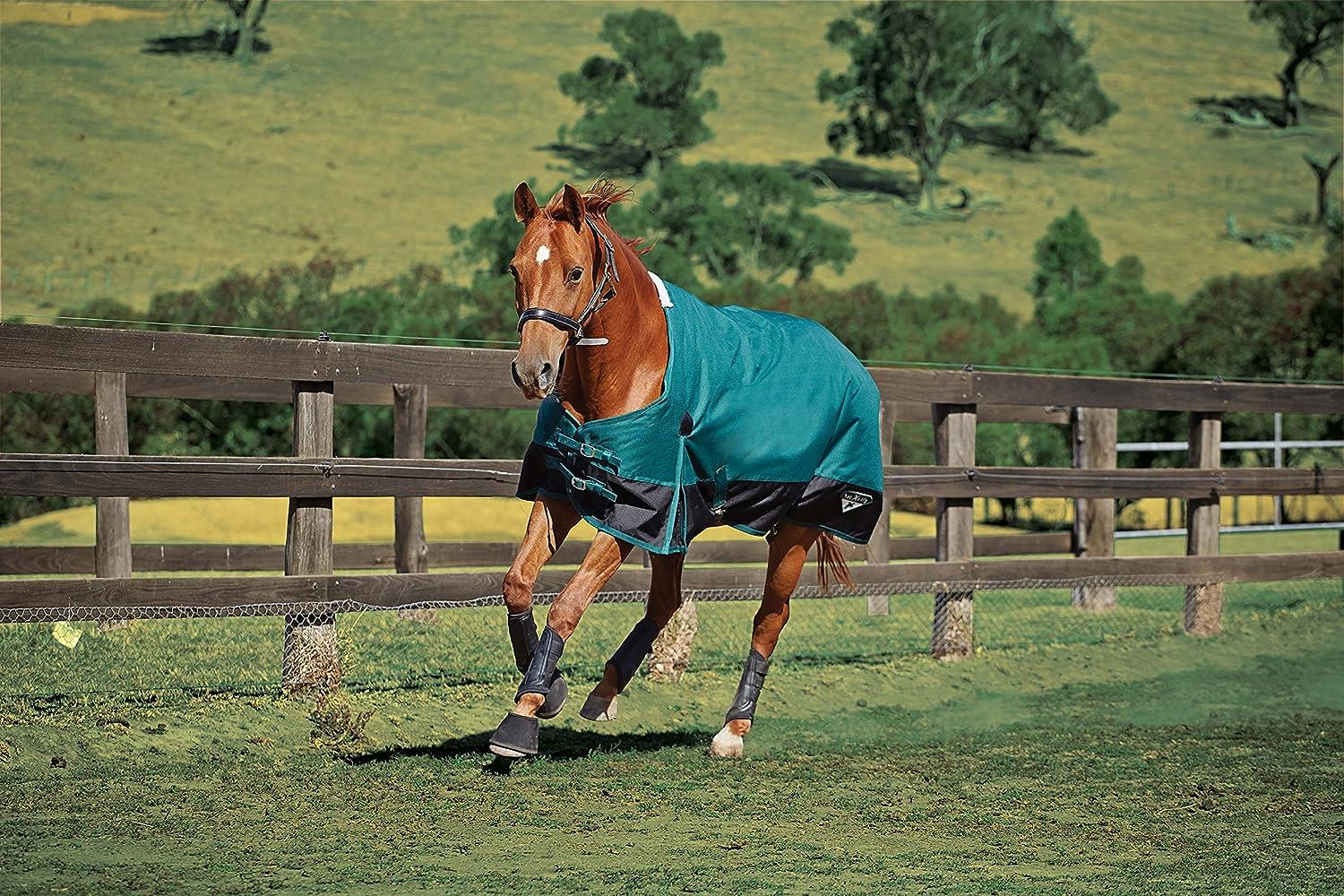 Saxon 1200D Standard Med Blanket Hunter/Black Size 60 801821