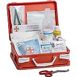 AIESI Cassetta medica di pronto soccorso con ALLEGATO 2 per aziende meno 3 dipendenti ✔ Conforme DM388/DL81 ✔ Made in Italy