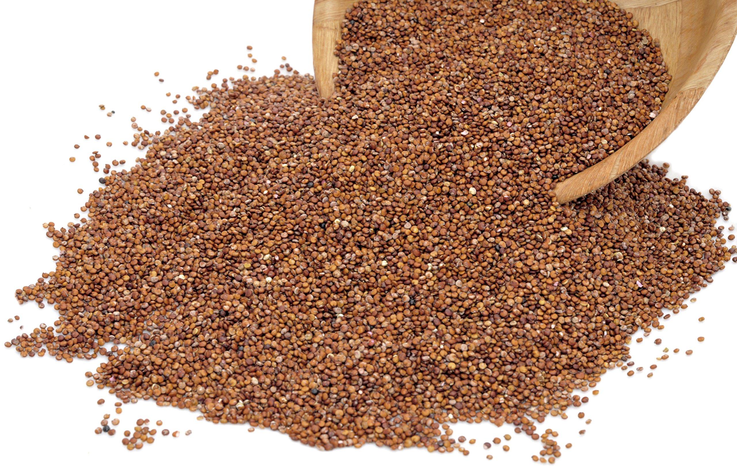 Royal Organic Red OA Quinoa (25 Lb bag) by OA QUINOA (Image #3)