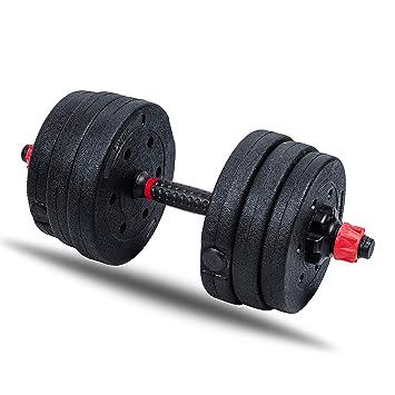 Leones de mancuernas de 10 kg, 20 kg, 30 kg gimnasio pesas Fitness bíceps vinilo mancuernas Talla:20 kg: Amazon.es: Deportes y aire libre