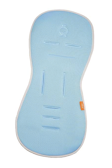 Amazon.com: carriola, color azul: Baby