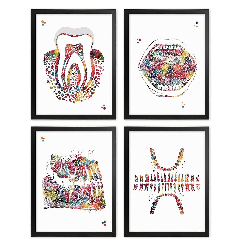 Framed Dental Watercolor Poster Set Tooth Chart Wall Art Print Dental Clinic Office Decor Mouth Wall Decor Molar Tooth Artworks Medical Decor Dentistry Student Science Graduaiton Art Dentist Gift