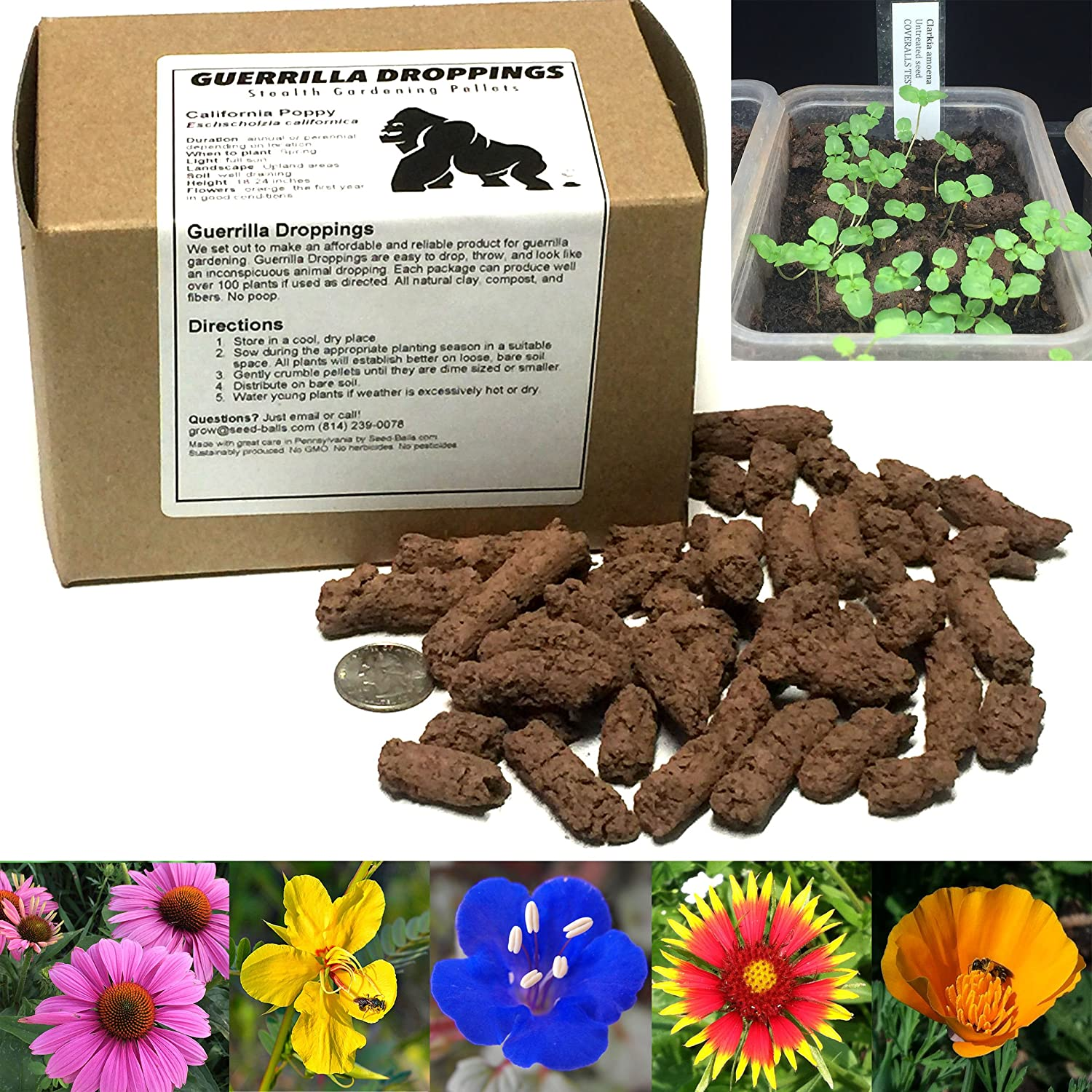 Amazon.com : Guerrilla Droppings- Native to your zipcode! Pollinator ...