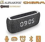 Alphasonik CHARM Wireless Bluetooth Portable Speaker with Digital LED Alarm Clock,