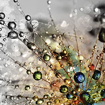 Artland Qualitat I Glas Kuchenruckwand Esg Spritzschutz Kuche 60 X