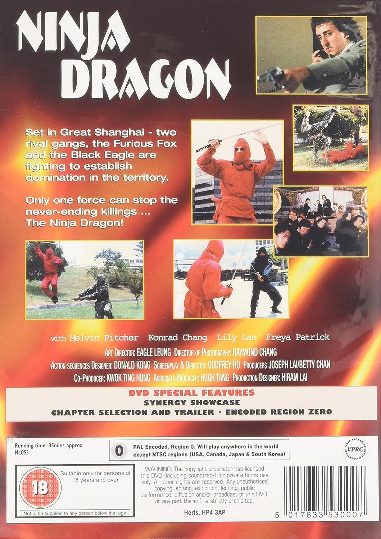 Ninja Dragon [Reino Unido] [DVD]: Amazon.es: Cine y Series TV