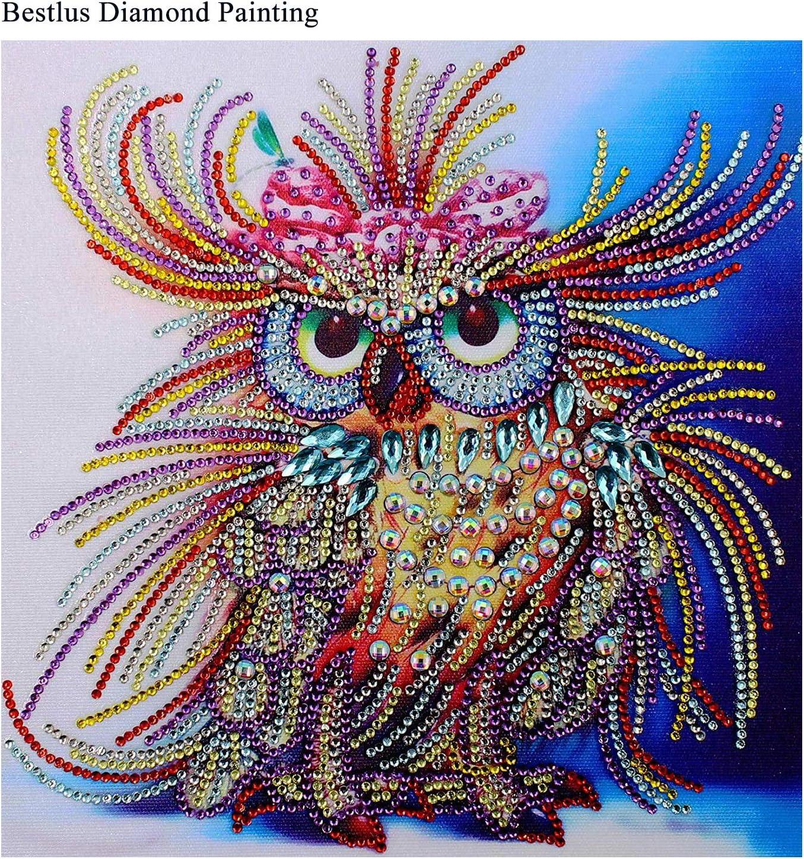 Amazon.com: Bestlus Premium 5D Owl Diamond Painting Kits for ...