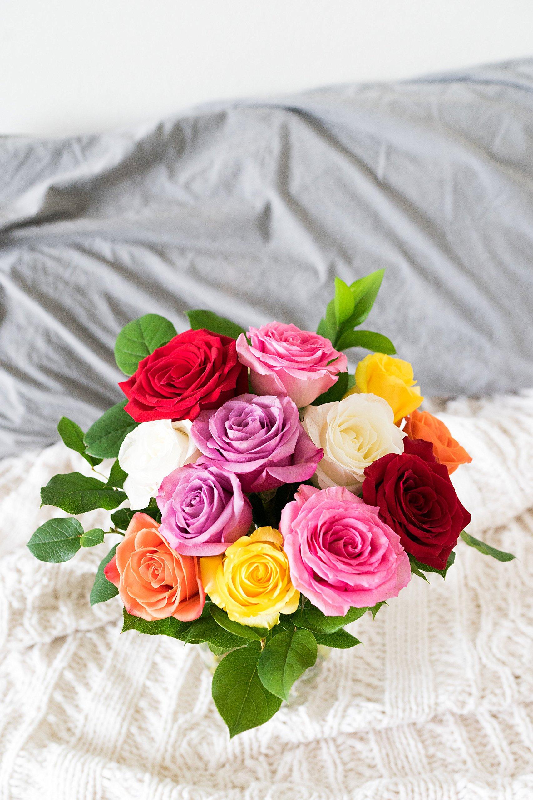 Flowers - One Dozen Rainbow Roses