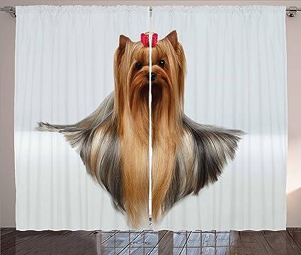 Yorkie de Yorkshire Terrier de fotos de cortinas por Ambesonne, cute con Vello Pelo tumbado