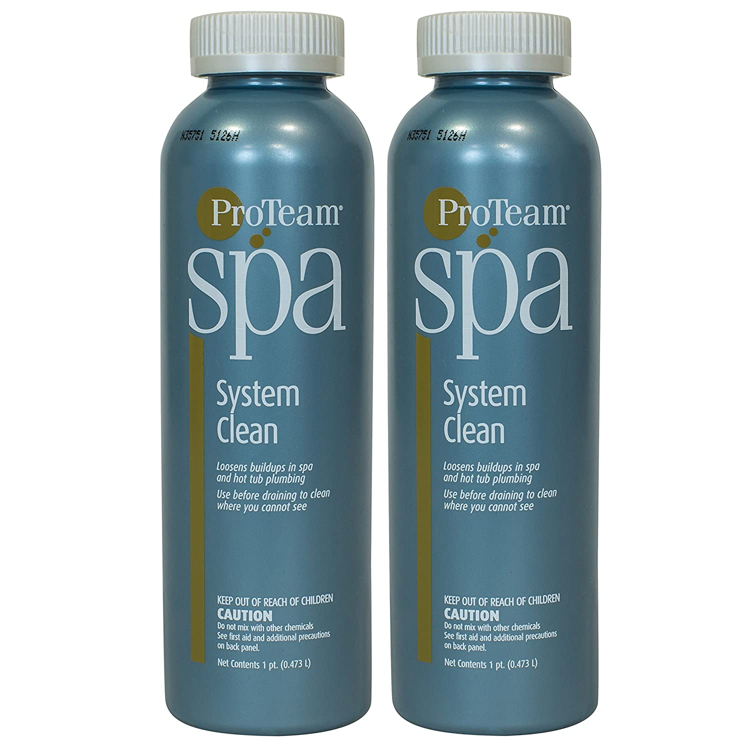 Amazon.com : ProTeam Spa System Clean (1 pt) (2 Pack) : Garden & Outdoor