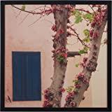 "Amazon Brand – Rivet Pink Tree Blossoms at the Villa Photo Print Wall Art, Black Wood Frame, 30"" x 30"""