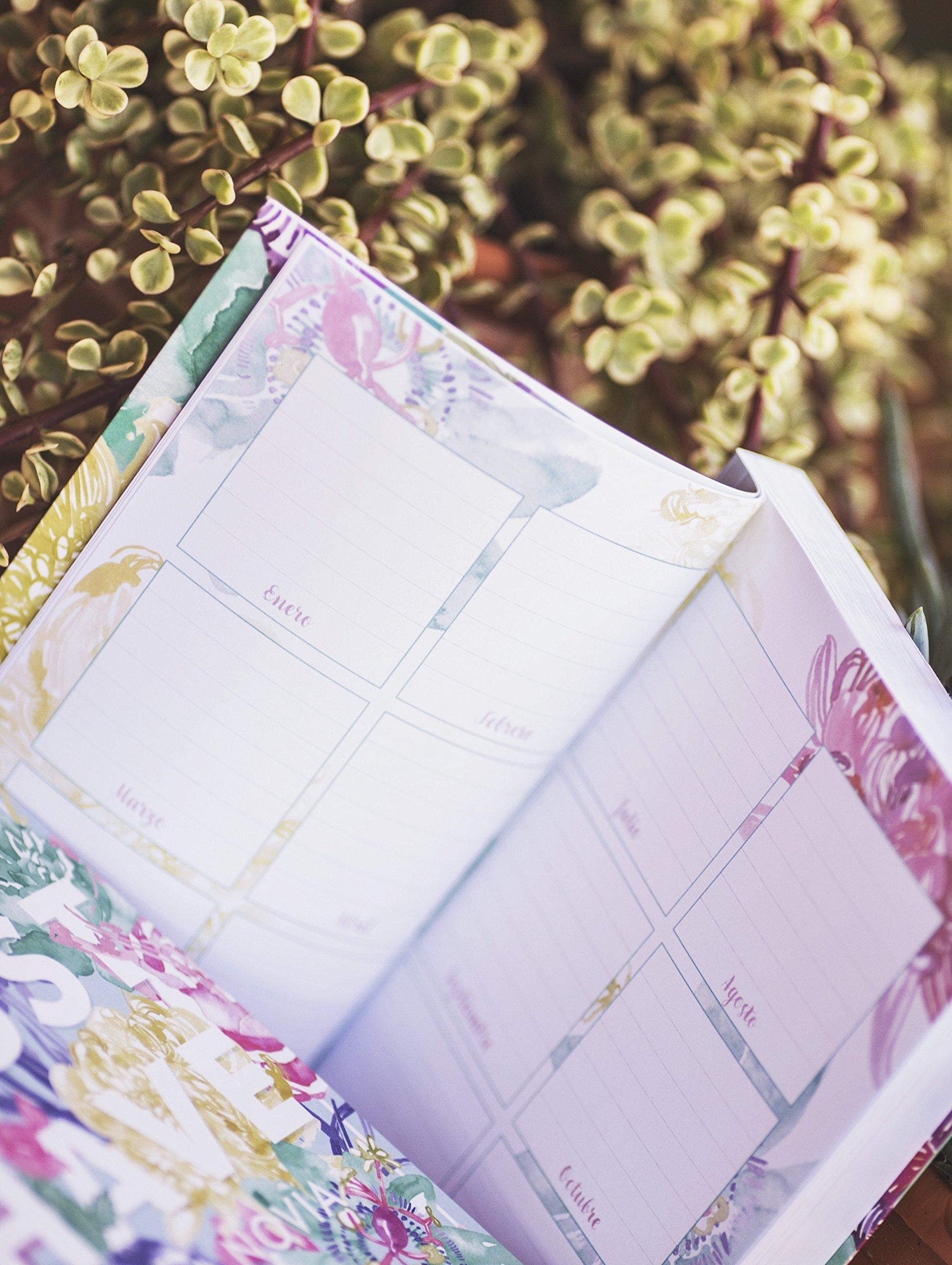 El Must Have de la Novia: Amazon.es: Fit for Weddings: Libros