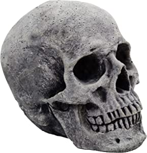 Skull Large Home and Garden Statues Concrete Decor Skulls Figures