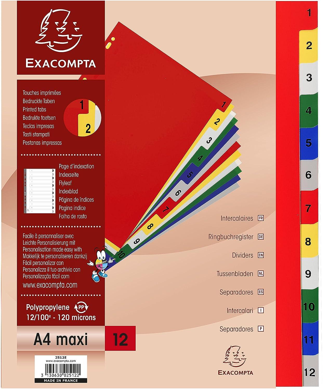 Exacompta 2512E Divisori e Segnaletica, 32x24 cm, Multicolore