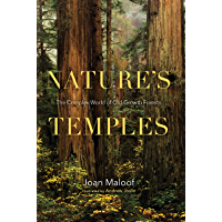 Nature's Temples: The Complex World of Old-Growth Forests