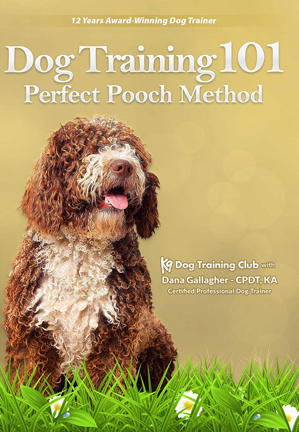 Amazon Com Dog Training 101 Dvd Pet Puppy Perfect Pooch Obedience Method Movies Tv