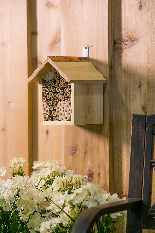 Amazon.com : Evergreen Bee Habitat Wall Mounted : Garden & Outdoor