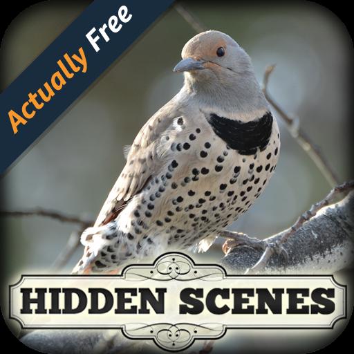 birding apps - 8