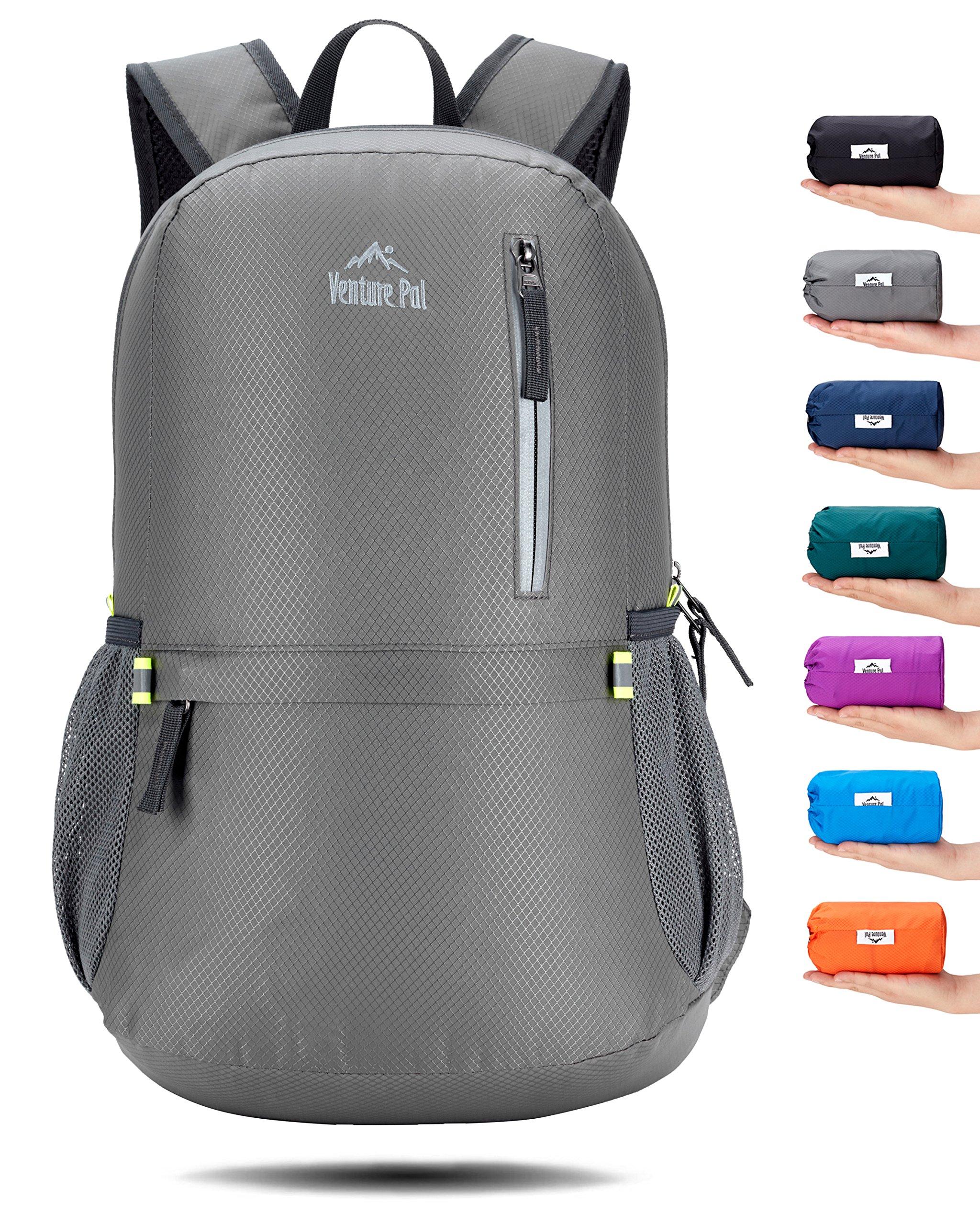 Venture Pal 25L Travel Backpack - Durable Packable Lightweight Small Backpack Women Men (Grey)