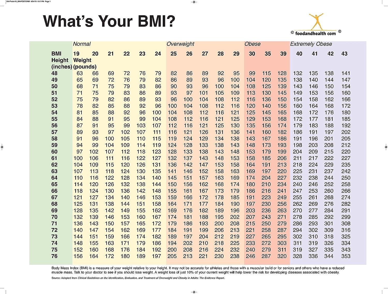 Amazon com nutrition education store bmi chart poster bmi index