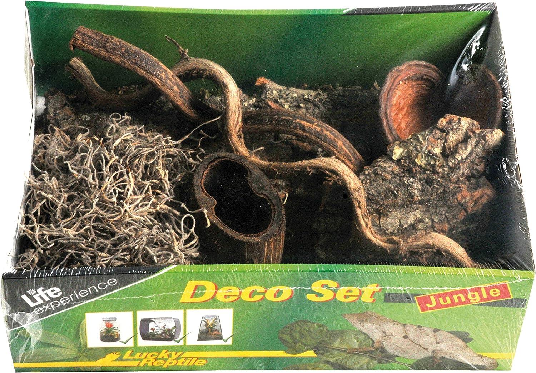 Lucky Reptile Life Experience - Conjunto de decoración de terrario de plástico de selva