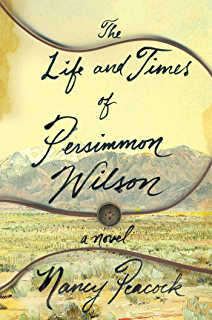 A broom of ones own essays on housecleaning and the writing the life and times of persimmon wilson a novel fandeluxe PDF