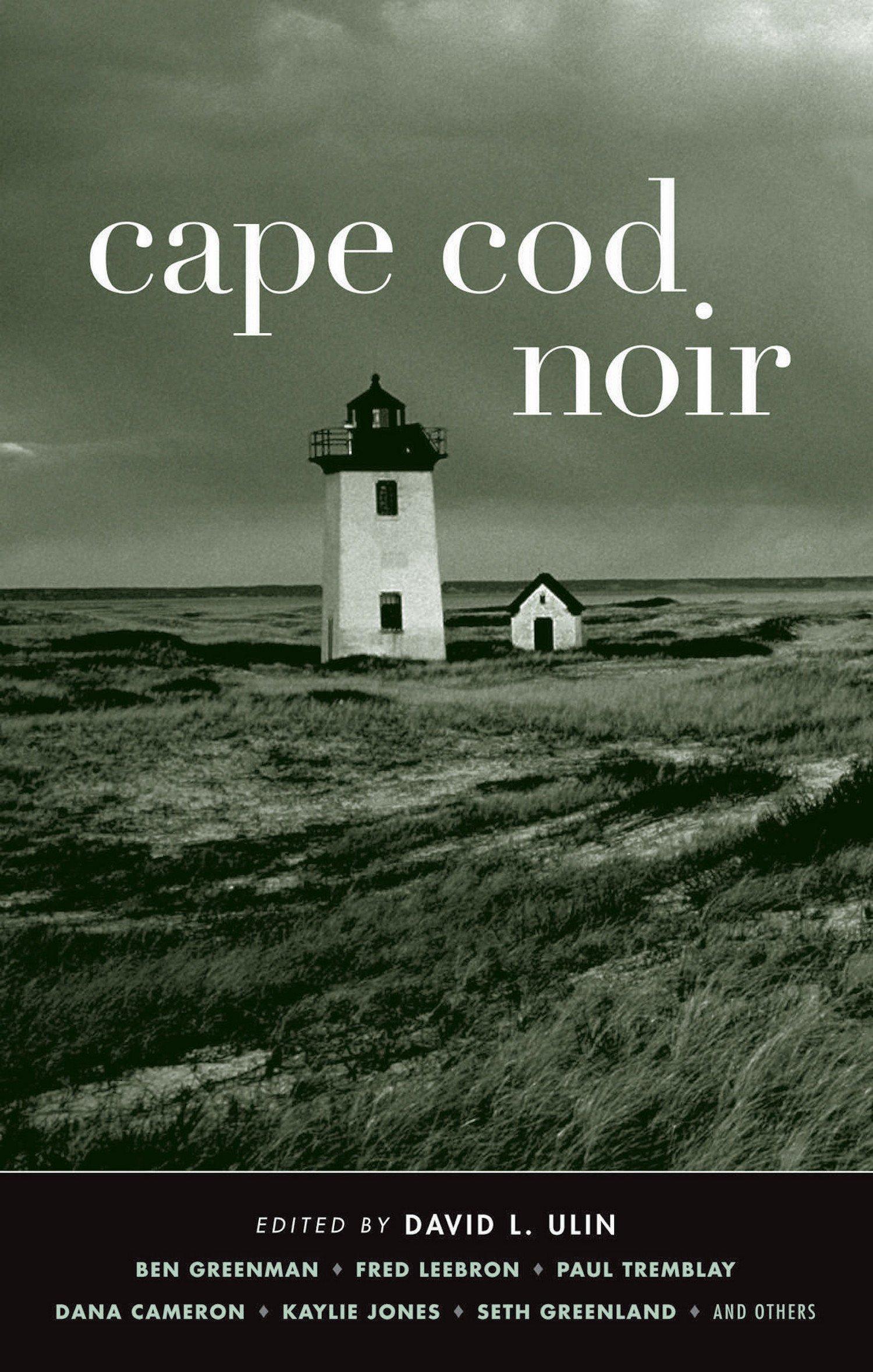 Cape Cod Noir (Akashic Noir): David L  Ulin, Jedediah Barry