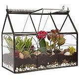 Deco Glass Geometric Greenhouse Terrarium, Succulent & Air Plant - Greenhouse (25 x 12 x 21 cm)