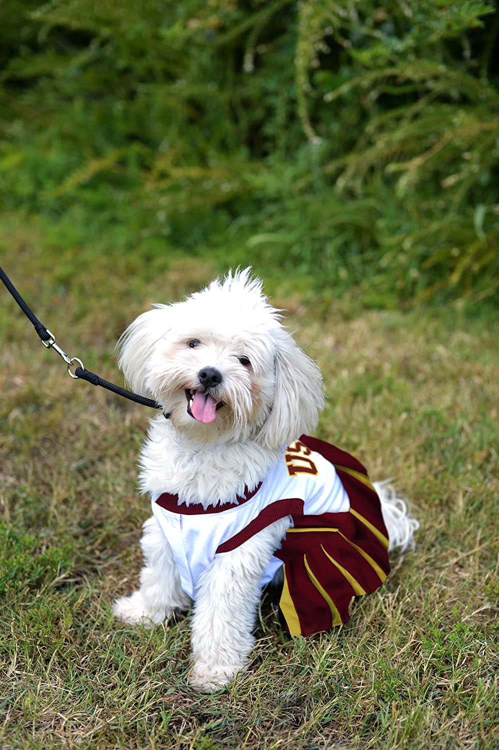 Pets First USC Trojans Cheerleading Outfit