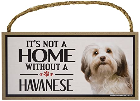 Decorations Gifts Wood Sign It/'s Not A Home Without A HAVANESEDogs