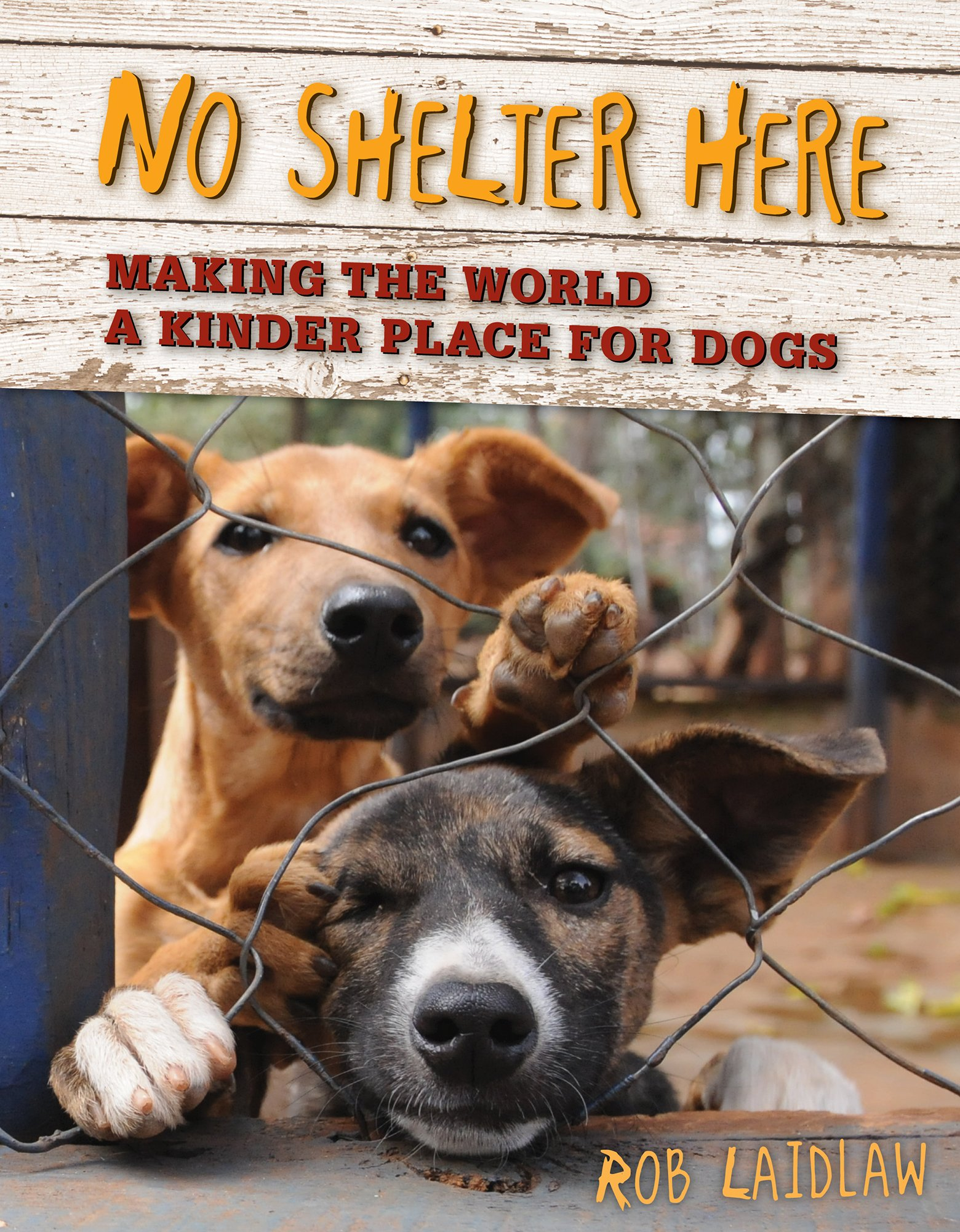 Read Online No Shelter Here: Making the World a Kinder Place for Dogs pdf