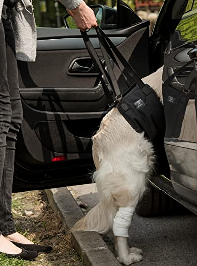 Dog Sling Dog Lift Harness