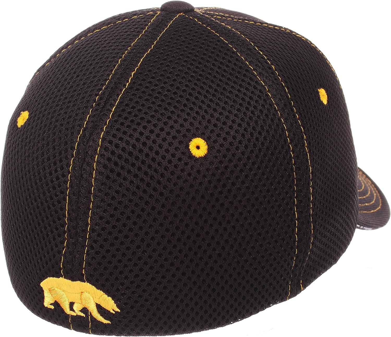 Zephyr Mens Undertaker NCAA Hat